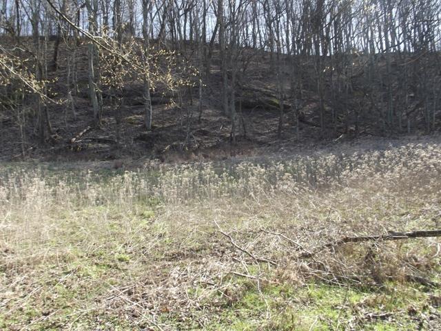 0 Turkey Creek Hwy - Photo 1