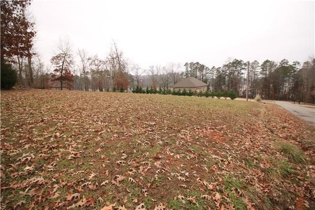 1 Lakeside Estates Road, Athens, AL 35614 (MLS #RTC1602245) :: Village Real Estate