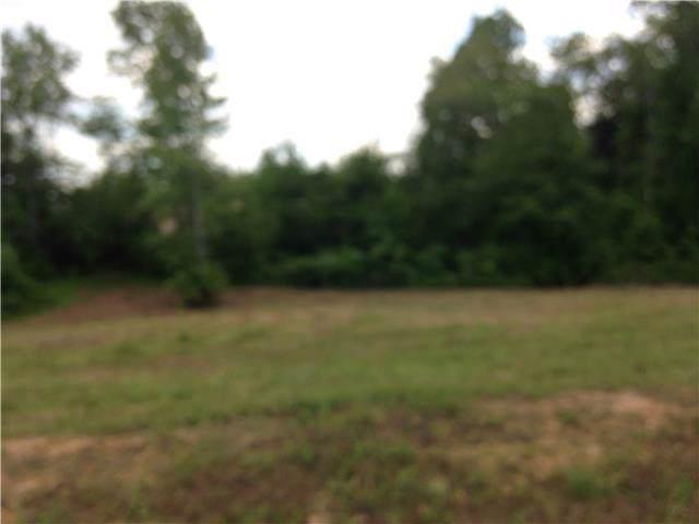 0 Michael Dr, Lawrenceburg, TN 38464 (MLS #RTC1630463) :: Nashville on the Move