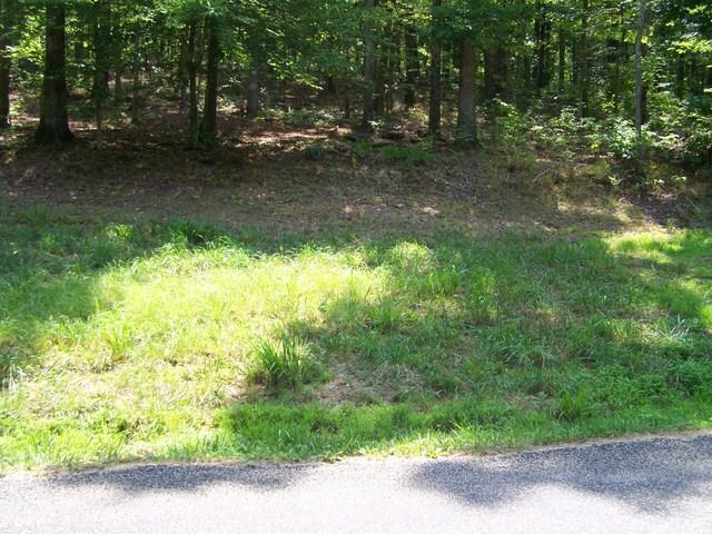13 Toms Creek Lake Rd - Photo 1