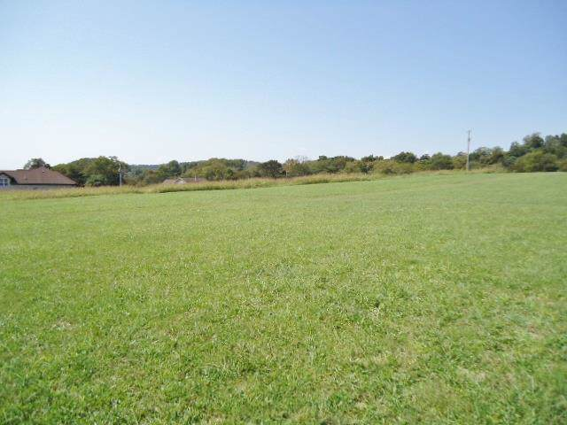 0 Bushes Ln Lot 3/Roys Farm - Photo 1