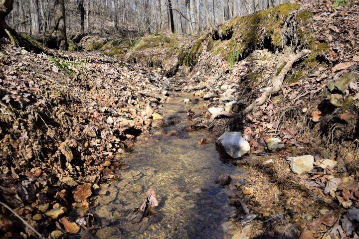0 Dry Weakley Creek, Ethridge, TN 38456 (MLS #RTC1901202) :: Nashville on the Move