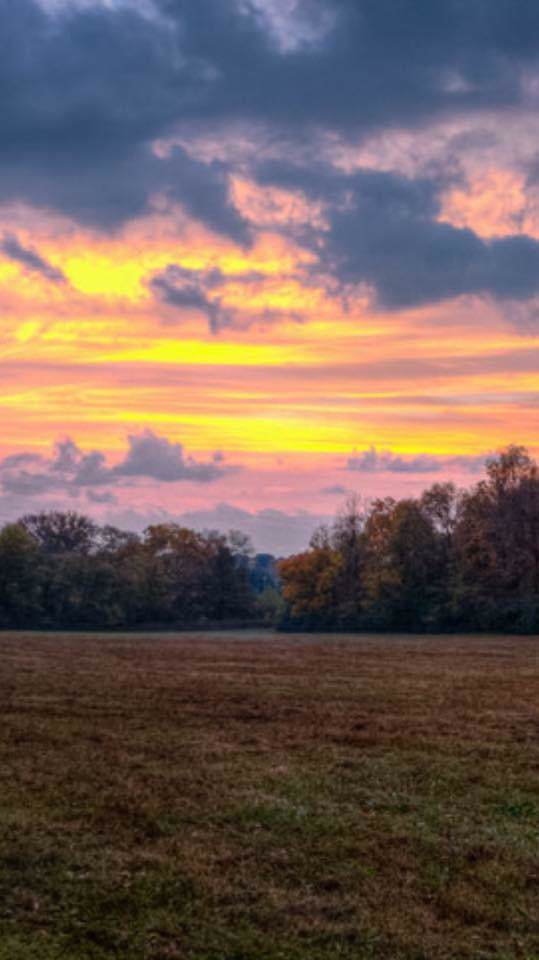 1 Knight Creek Rd, Watertown, TN 37184 (MLS #RTC1905454) :: Katie Morrell | Compass RE