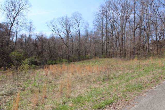 0 Kingwood Dr, Mc Minnville, TN 37110 (MLS #RTC1908724) :: Benchmark Realty