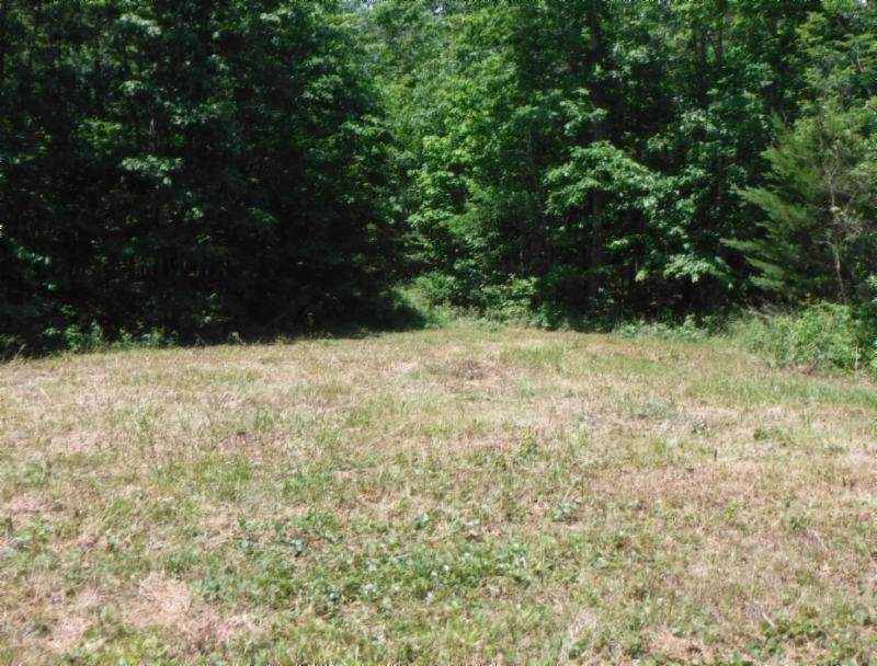 7 .53 Ac. Big Piney Loop - Photo 1