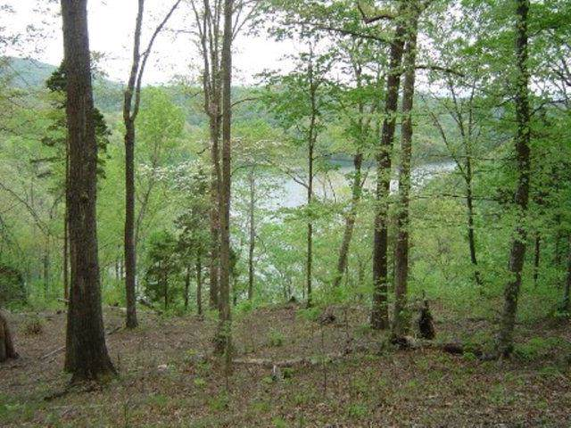 8928 Faix Road, Byrdstown, TN 38549 (MLS #RTC1958330) :: Village Real Estate