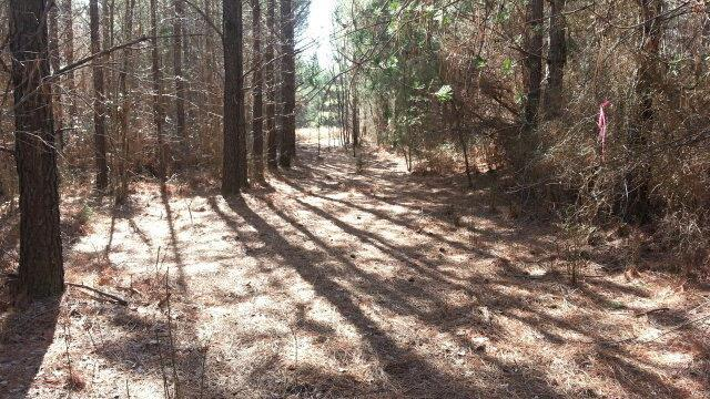 0 Ridge Wood, Spencer, TN 38585 (MLS #RTC1989530) :: Village Real Estate