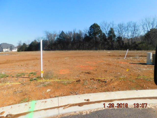 3102 Stephanie Ct, Murfreesboro, TN 37128 (MLS #RTC2006882) :: REMAX Elite