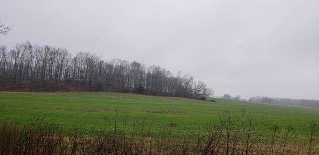 7 Taylor Rd, Manchester, TN 37355 (MLS #RTC2018492) :: Village Real Estate