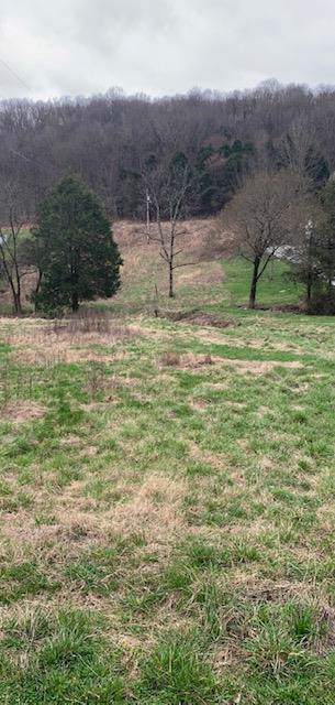 0 Wilkerson Hollow Ln - Photo 1