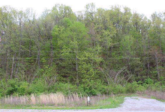 0 Johnson Hollow Rd, Thompsons Station, TN 37179 (MLS #RTC2034846) :: Armstrong Real Estate