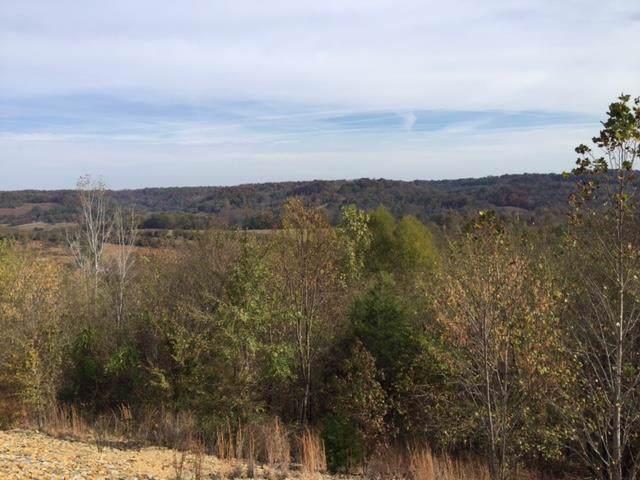 460 Wiskey Way, Pulaski, TN 38478 (MLS #RTC2040466) :: Nashville on the Move