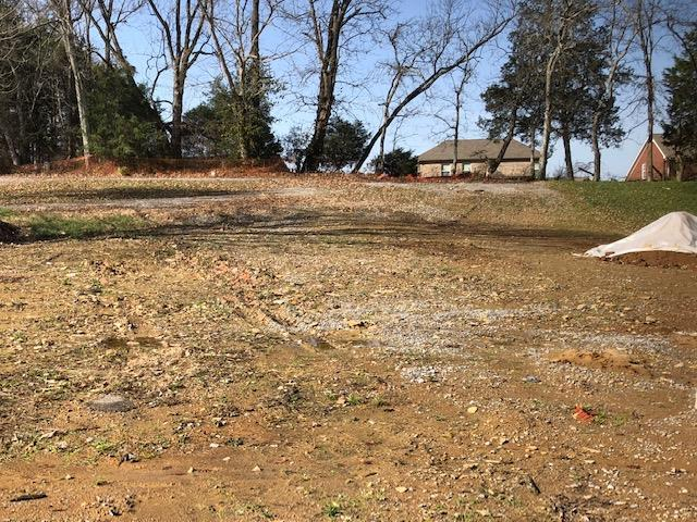 105 Eston Way, Mount Juliet, TN 37122 (MLS #RTC2042545) :: John Jones Real Estate LLC