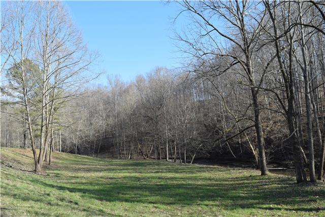 0 Barnhill Rd, Primm Springs, TN 38476 (MLS #RTC2043175) :: The Kelton Group
