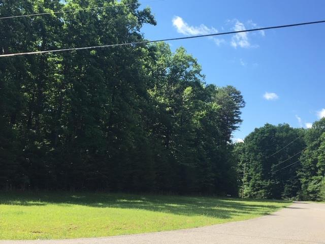0 Hawks Bluff Rd, Spencer, TN 38585 (MLS #RTC2046630) :: Village Real Estate