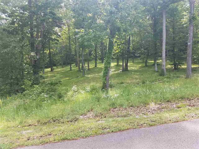73 Riverbend Ln, Bath Springs, TN 38311 (MLS #RTC2047533) :: Katie Morrell / VILLAGE