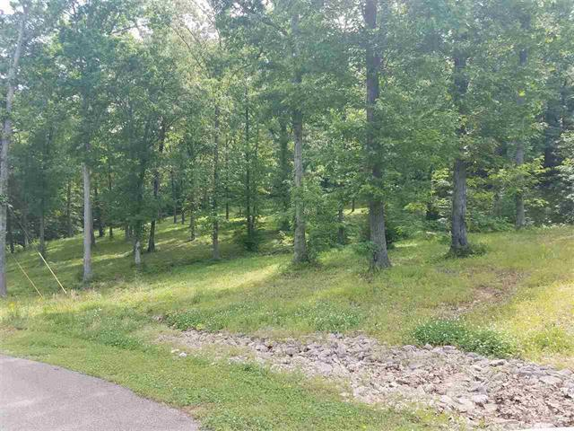15958 Highway 13 S, Hurricane Mills, TN 37078 (MLS #RTC2047570) :: Maples Realty and Auction Co.