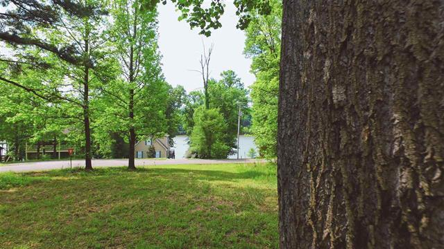 49 Featherfoot Pkwy Loop, Parsons, TN 38363 (MLS #RTC2047736) :: REMAX Elite