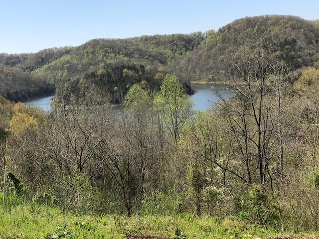 48 Nadia Ln, Smithville, TN 37166 (MLS #RTC2048081) :: REMAX Elite