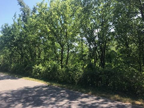 3850 Ensor Hollow Rd, Buffalo Valley, TN 38548 (MLS #RTC2049714) :: Keller Williams Realty