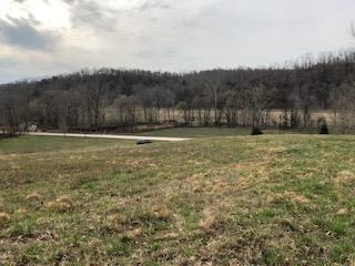 4925 Turkey Creek Rd, Waverly, TN 37185 (MLS #RTC2051200) :: The Miles Team | Compass Tennesee, LLC