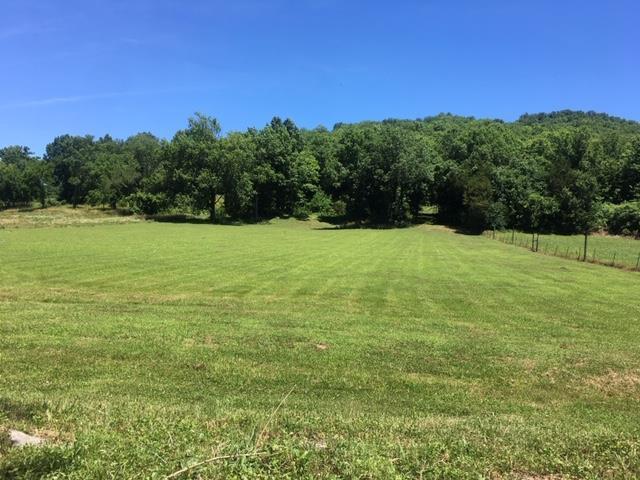 0 Little Salt Lick Creek Rd, Pleasant Shade, TN 37145 (MLS #RTC2053876) :: REMAX Elite