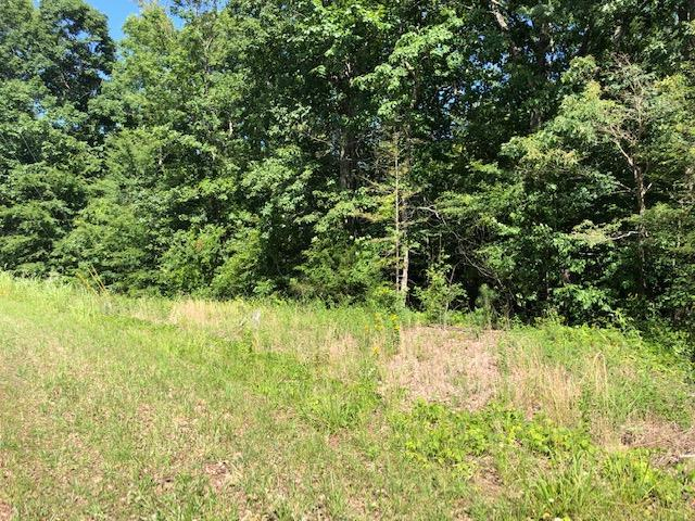76 Old Sr, Dover, TN 37058 (MLS #RTC2054257) :: Village Real Estate