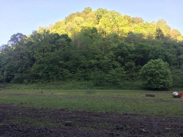 0 Shrum Hollow Road, Lafayette, TN 37083 (MLS #RTC2054996) :: CityLiving Group