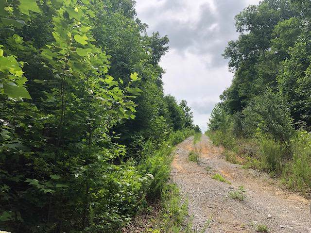 0 Roddy Springs Rd, Coalmont, TN 37313 (MLS #RTC2057882) :: REMAX Elite