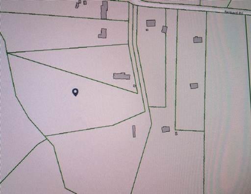 0 Bernard Rd, Joelton, TN 37080 (MLS #RTC2058296) :: The Easling Team at Keller Williams Realty