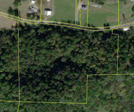 0 Massey Hollow Lane, Dixon Springs, TN 37057 (MLS #RTC2059471) :: Village Real Estate