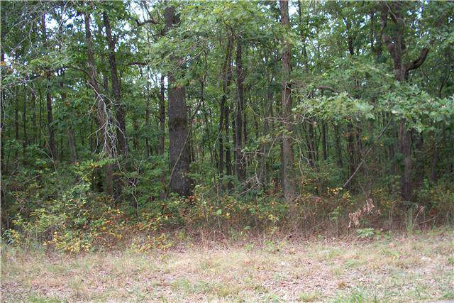 0 Snake Pond, Sewanee, TN 37375 (MLS #RTC2060001) :: Hannah Price Team