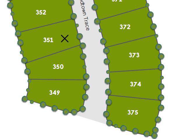351 Goodtown Trace, Columbia, TN 38401 (MLS #RTC2062231) :: Stormberg Real Estate Group