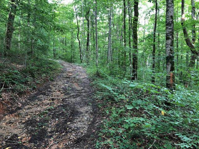 0 Safley Hollow Rd Off Of, McMinnville, TN 37110 (MLS #RTC2062628) :: RE/MAX Choice Properties