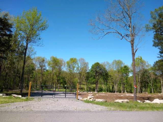 701 Mcelroy Rd, Readyville, TN 37149 (MLS #RTC2063540) :: Team Wilson Real Estate Partners