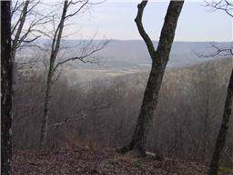 1639 Jackson Point Rd, Sewanee, TN 37375 (MLS #RTC2066610) :: REMAX Elite