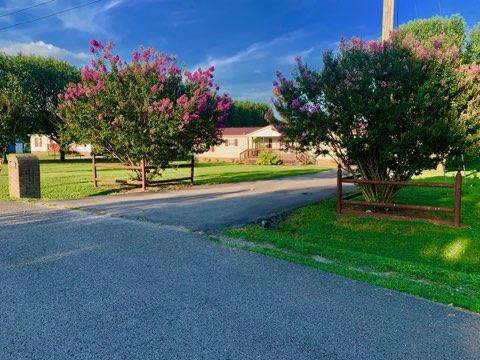 110 Peach Tree Ln, Bell Buckle, TN 37020 (MLS #RTC2067315) :: RE/MAX Homes And Estates