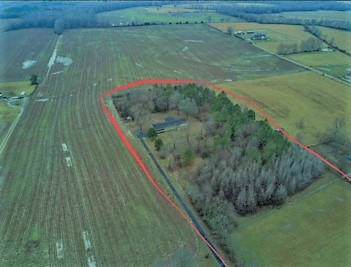 83 You Take It Rd, Ardmore, TN 38449 (MLS #RTC2069225) :: Nashville on the Move