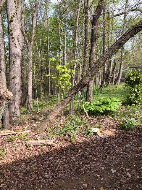 0 Hickory Point Dr, Winchester, TN 37398 (MLS #RTC2069753) :: Village Real Estate