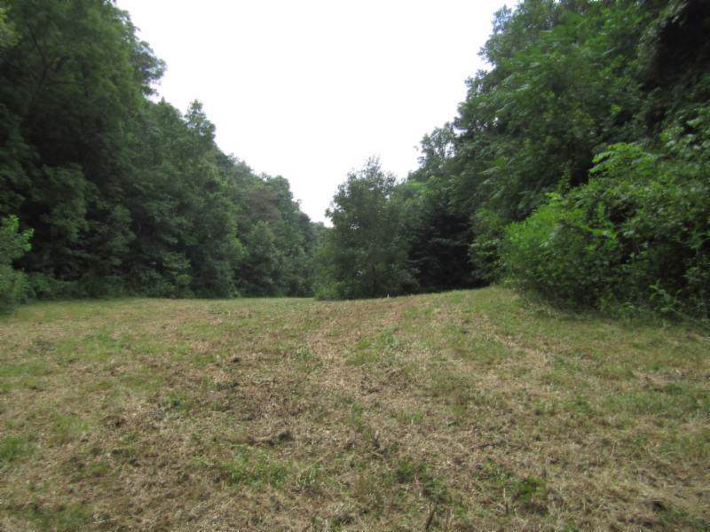 88 Ac. Modock Hollow Road - Photo 1