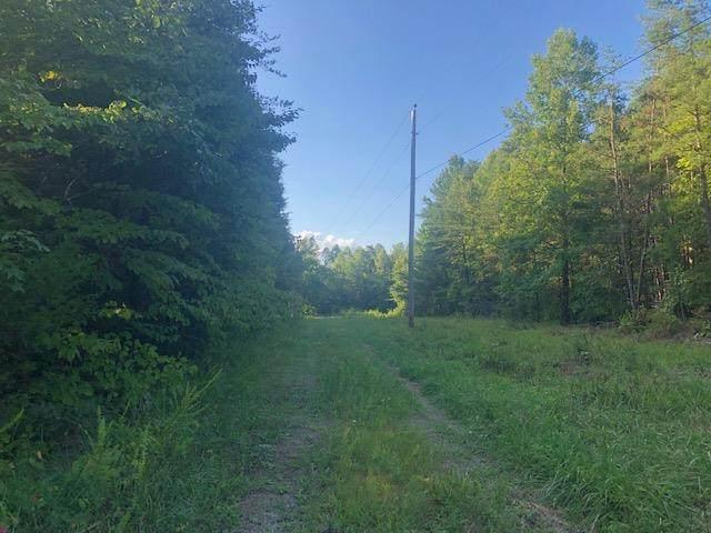 0 Savage Boles Rd, Wilder, TN 38589 (MLS #RTC2072232) :: Village Real Estate