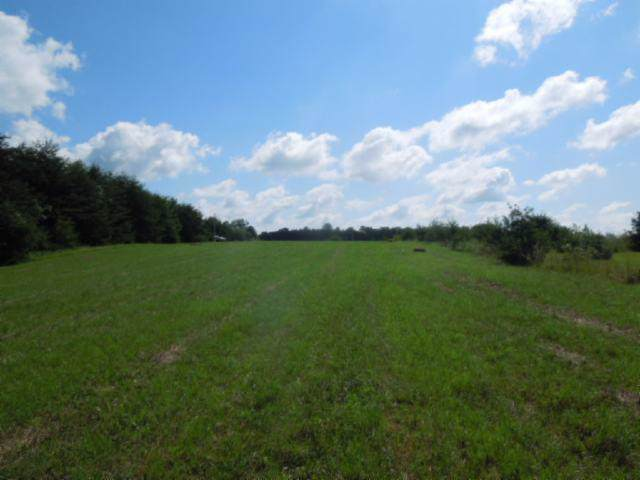 8 .73 Ac Dodson Branch Hwy, Cookeville, TN 38501 (MLS #RTC2075157) :: REMAX Elite