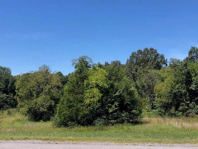 0 Highway 231 North - Photo 1