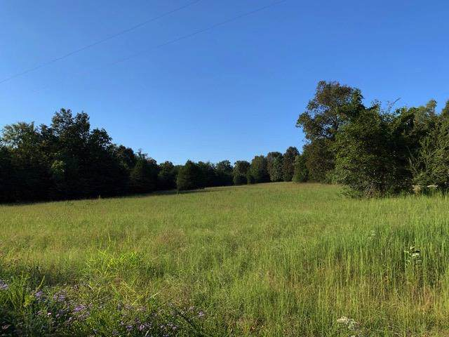 0 Jess Neal Rd, Spring Hill, TN 37174 (MLS #RTC2080411) :: DeSelms Real Estate