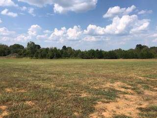 1 Warner Bridge Rd, Shelbyville, TN 37160 (MLS #RTC2081294) :: Nashville's Home Hunters