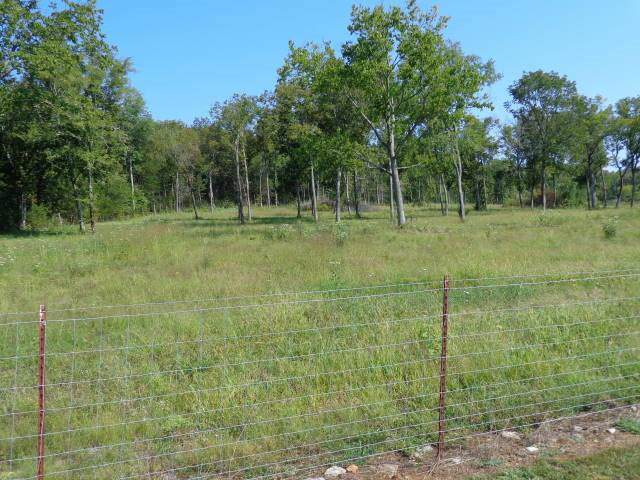 0 Rigsby Rd, Eagleville, TN 37060 (MLS #RTC2081836) :: John Jones Real Estate LLC