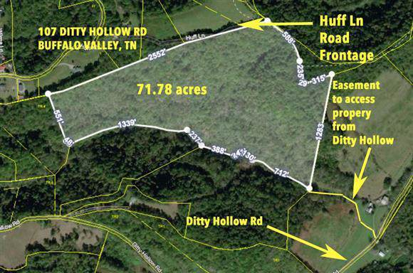 107 Ditty Hollow Rd, Buffalo Valley, TN 38548 (MLS #RTC2082081) :: REMAX Elite