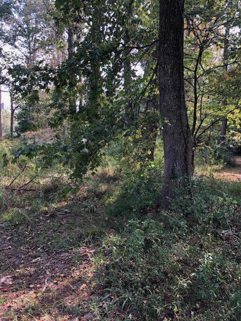 2 Woodland Ct, Tullahoma, TN 37388 (MLS #RTC2083738) :: Maples Realty and Auction Co.
