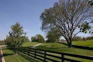 301 Circuit Road, Franklin, TN 37064 (MLS #RTC2087802) :: Village Real Estate