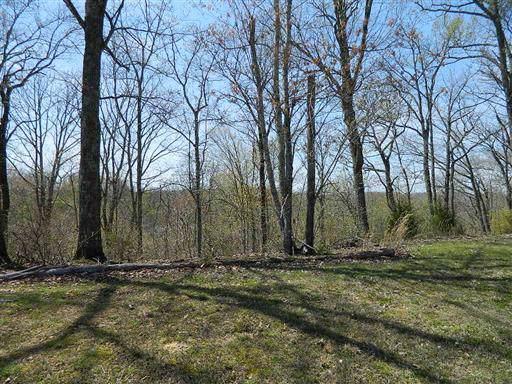 404 Heritage Trail, Smithville, TN 37166 (MLS #RTC2088942) :: REMAX Elite